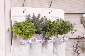 Essentials hanging herb garden craft