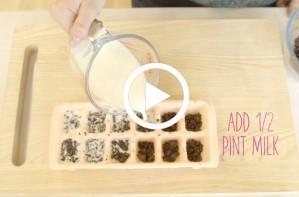 Food hack: How to make milk and cookie ice cubes