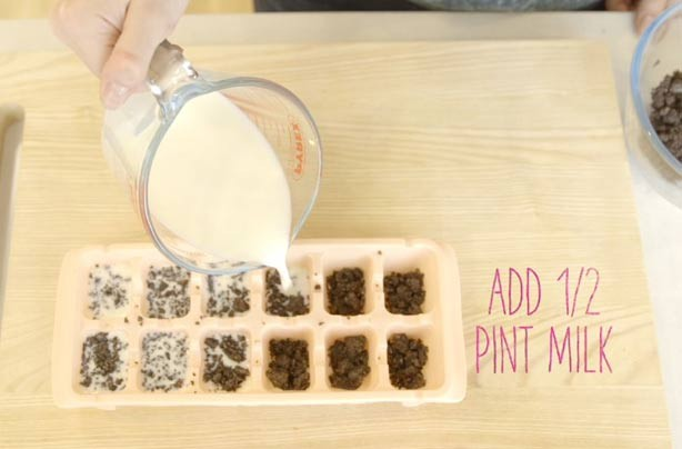 Food hacks: How to make milk and cookies ice cubes