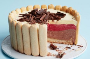 Chocolate raspberry and vanilla ice box cake