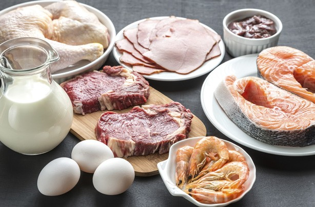 Meat, dairy and eggs, LCHF diet