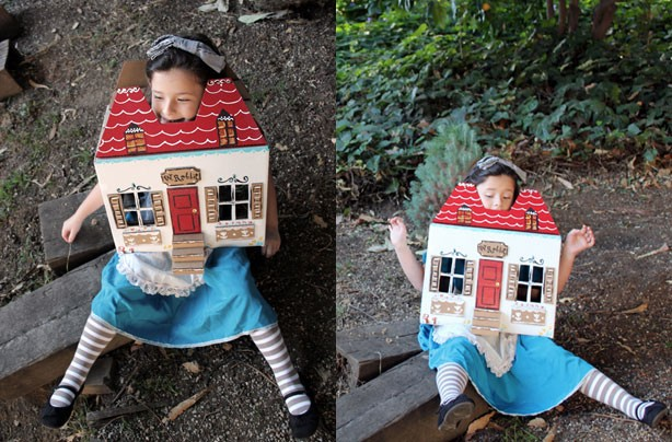 Alice In Wonderland World Book Day Costume