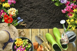 Cheap garden ideas