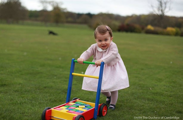 Princess Charlotte's 1st birthday, May 2016
