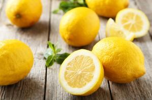 lemon hacks uses diy