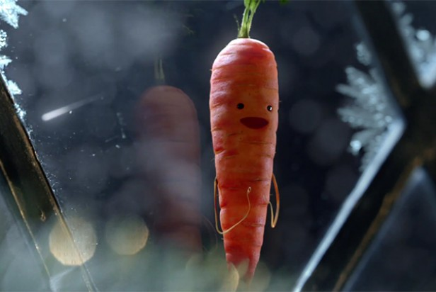 Aldi christmas advert 2016 kevin carrot