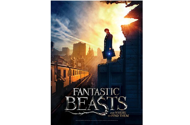 Top Toys 2017: Fantastic Beasts and Where to Find Them 2D Puzzle Poster