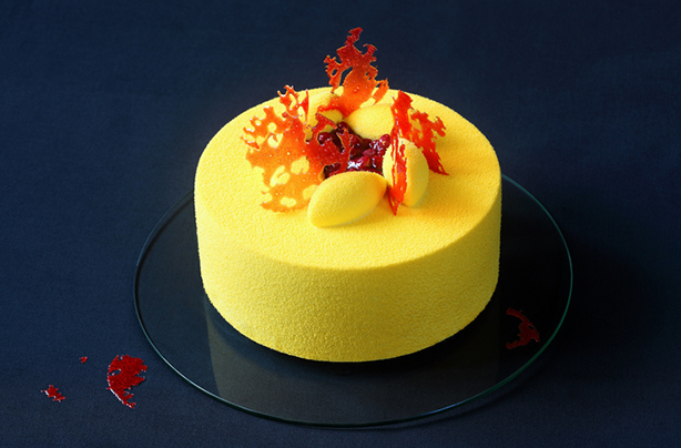 What Is An Entremets And How Can You Make One Goodtoknow